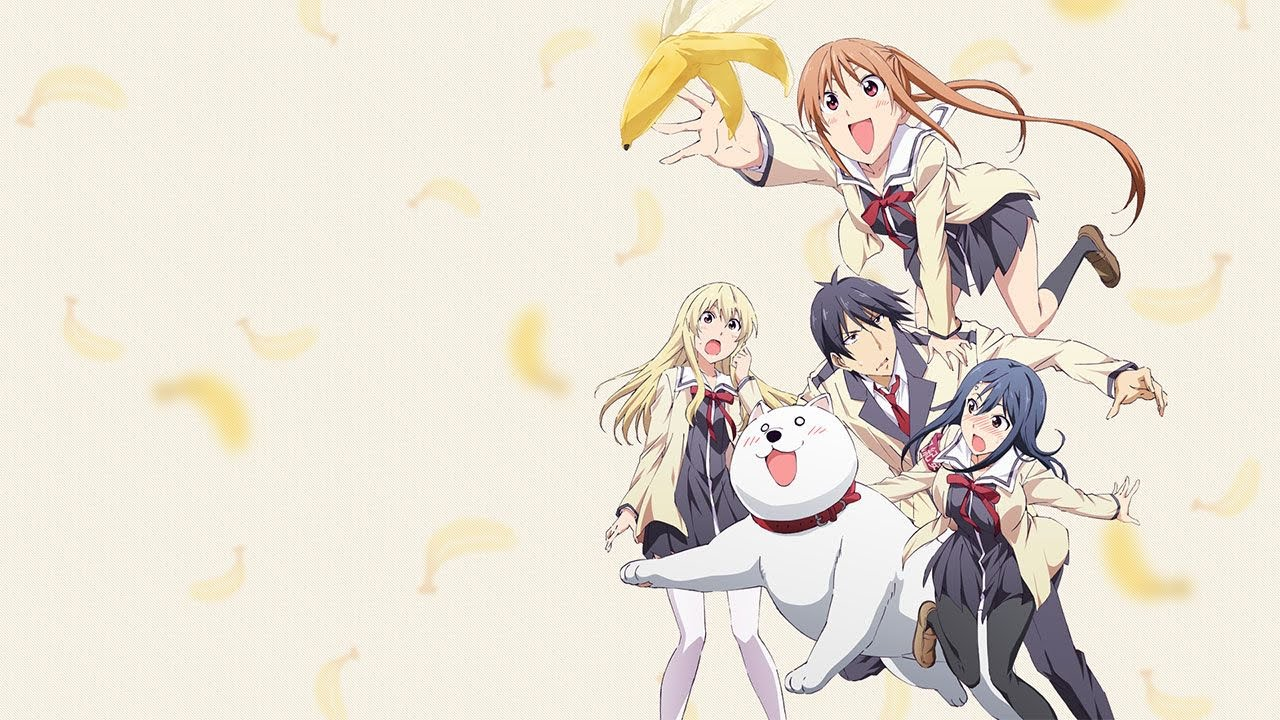 Cover image of Aho Girl
